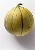 Eine Charentais-Melone