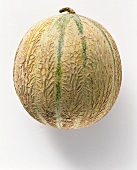 A Whole Cantaloupe Melon