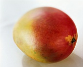 A red and yellow mango