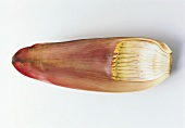 Banana flower petal on white background