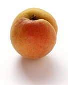 An apricot