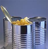 Apfelstückchen in geöffneter Konservendose