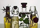 Four bottles of herb vinegars and herb oil
