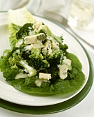Broccoli with blue cheese on lettuce