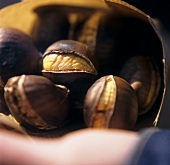 Sweet chestnuts falling out of paper bag on to hand