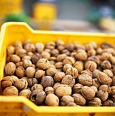 Many walnuts in crate at the market