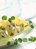 Chicory salad with Roquefort, nuts and watercress