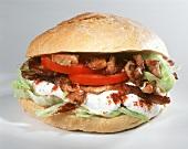 Doener Kebap Sandwich