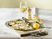A plate of oysters and lemon