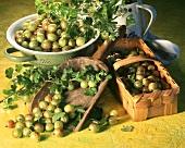 Still life: green gooseberries