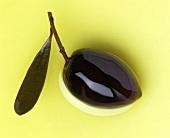 Eine braune Olive mit Zweig in Olivenöl
