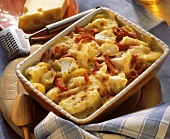 Cauliflower casserole with paprika & bacon in baking dish