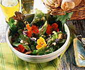 Mixed salad leaves, nasturtium flowers & mustard & dill sauce