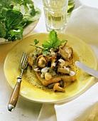 Toast with various mushrooms & yoghurt sauce