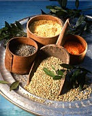 Various types of lentils in wooden bowls