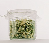 Bean Sprouts in a Glass Jar