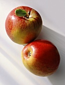 Two apples (Cox's Orange pippin) on white background