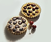 Quark tart with cherries