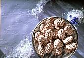 Schokoladenbrötchen mit Zitronenglasur