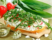 Sandwich with quark, radishes and ramsons (wild garlic)