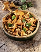 Mushroom stir-fry with chanterelles and ceps