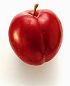 Eine rote Pflaume