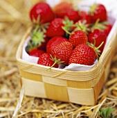 Fresh strawberries in punnet on straw