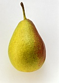 A Gute Luise pear