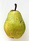 A Kaiser Alexander pear