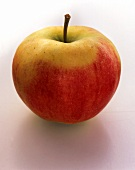 An Elstar apple