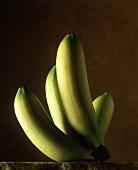 Bananenstaude vor braunem Hintergrund