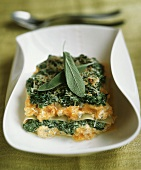 Vegetarian lasagna with sage leaves