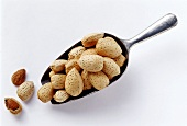 Almonds on and beside a scoop
