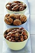 Hazelnuts, walnuts and pecan nuts in bowl