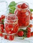 Eingemachte Erdbeeren