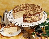 Peanut gateau with chocolate icing (Kammermayer cake)