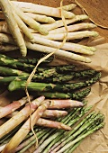 Asparagus on paper