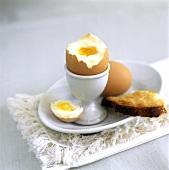 Weich gekochtes Frühstücksei