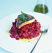 Pike-perch on beetroot