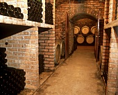 Cellar of the wine pioneer Josef Jamek (JJJ), Wachau, Austria
