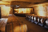 The fine wine cellar of Chateau Franc-Mayne, St. Emillion