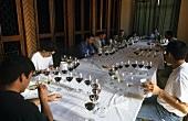 Tasting Veramonte wine, Casablanca, Chile