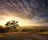Sunrise over vineyards of Mountadam, Australia