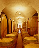 Barrique wine cellar on Klein Constantia Estate, S. Africa