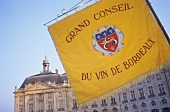 A flag at the famous wine festival in Bordeaux, France