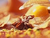 Detail: star anise and kumquat on Christmas dessert