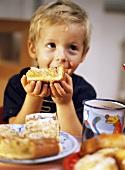 Small boy eating apple cake