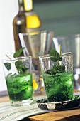 Two glasses of Mint Julep (whisky and mint cocktail)