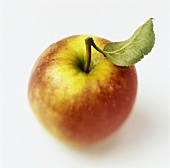 Apple with Stem