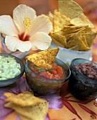 Guacamole, tomato salsa, bean dip & tortilla chips